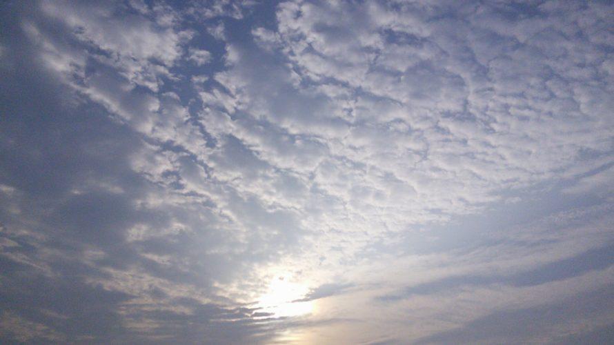 日本や世界や宇宙の動向 : ドロレス・キャノンさんのインタビュー・・・次元上昇中の地球・人類について
