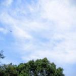 秋近し♪ | ShortNote