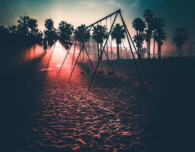 パームツリーと砂浜