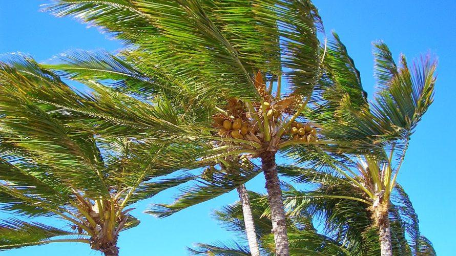 ハワイ島の空のもと